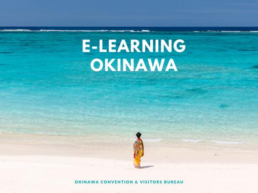 Lancement de l'elearning sur Okinawa au Japon - DR