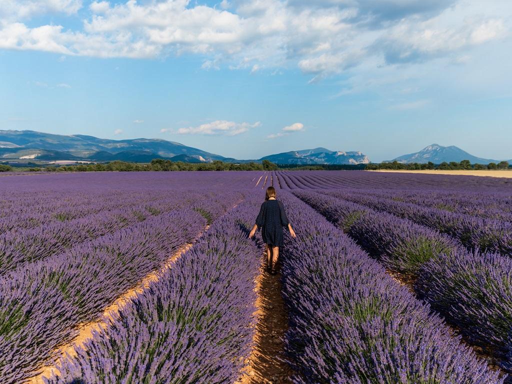 La France reste une destination de deux régions essentiellement, l'Ile-de-France et la région Sud (PACA) qui possèdent des patrimoines culturels et naturels qui n'ont aucun besoin de promotion et qui attirent sur leur seul nom des millions de visiteurs directs - DR : DepositPhotos, AlexGukBO