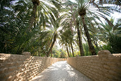 Oasis d'Al Ain ©Abu Dhabi Department of Culture and Tourism