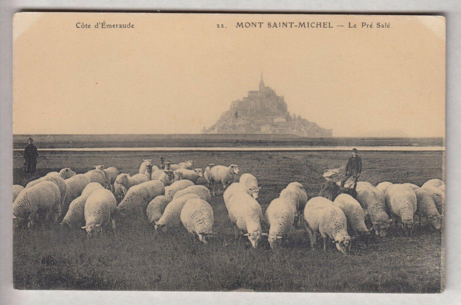 """L'agneau de pré salé, un """"must"""" qui a désormais son AOP. Ici sur une ancienne carte postale - DR"""