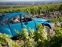 Balade dans les vignes en 2CV © 2CV Bourgogne Tours / Exclusive France Tours