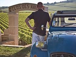 Rêverie viticole devant le Clos des Avaux – vignobles de Bourgogne © 2CV Bourgogne Tours / Exclusive France Tours