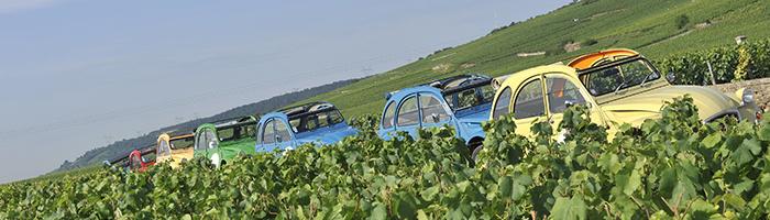 Farandole de 2CVs dans les vignobles de Bourgogne © Alain Doire / Bourgogne Tourisme Franche Comté