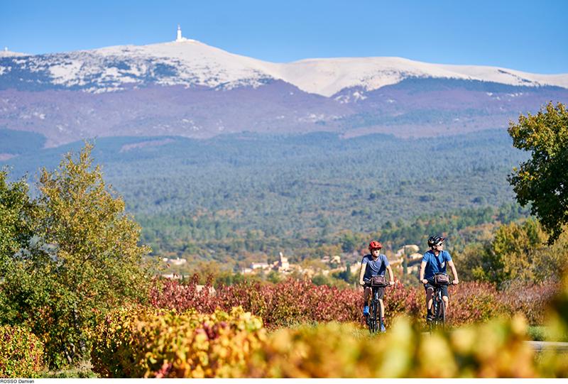 © Damien Rosso - Tour à vélo au pied du mont Ventoux - Vaucluse