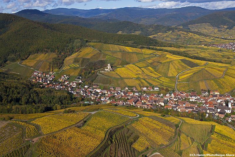 vignoble de Katzenthal - Alsace