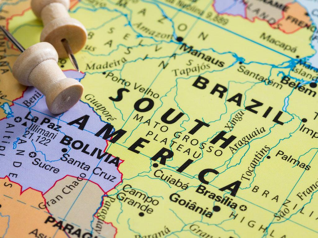 Le variant brésilien, dit varian P1 est au coeur des préoccupations -Depositphotos.com wollertz