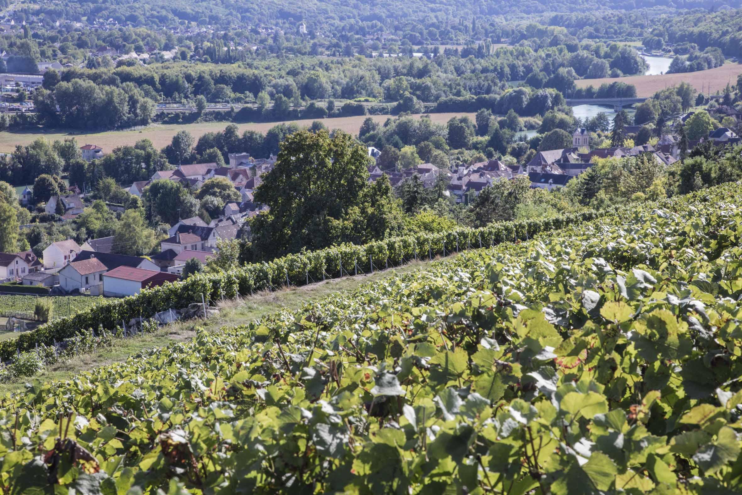 Nouveau contrat régional de destination pour Coulommiers Pays de Brie Photo Loïc Séron