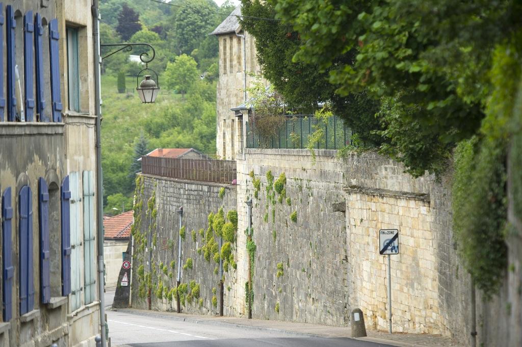 la Ville haute de Bar-le-Duc - Guillaume Ramon grpress