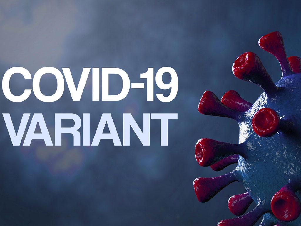 Les résultats montrent que les deux vaccins à ARN messager protègent de façon efficace contre le virus originel, contre le variant D614G et contre le variant britannique, surtout après deux injections vaccinales. En revanche, les anticorps des patients neutralisent peu la protéine S des variants sud-africains et brésiliens, ce qui suggère que ces vaccins pourraient avoir une faible faible efficacité contre ces variants - Depositphotos andreajk3