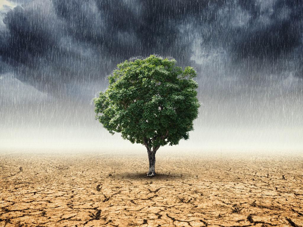 Les mesurettes prises timidement par la ministre de la transition écologique n'ont rien de révolutionnaires. On attendait pourtant beaucoup mieux - Depositphotos.com nirutdps