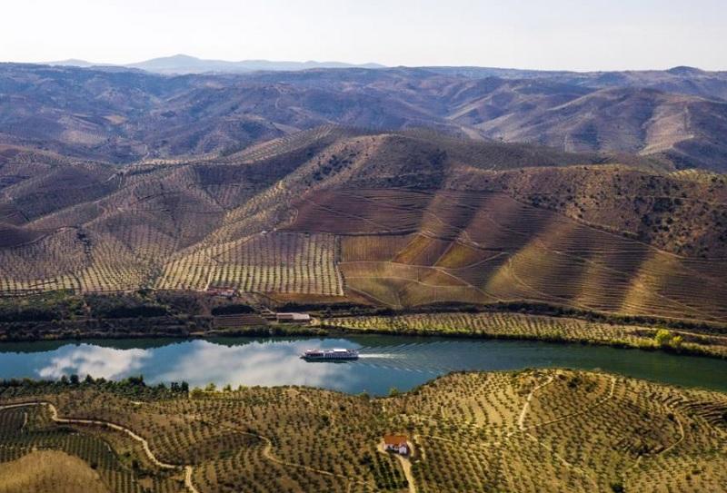 Entre Porto et Salamanque, le navire suivra les méandres du fleuve au cœur d'une vallée sculptée de vignes en terrasses - DR : Rivages du Monde