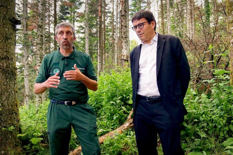 VINCI Airports a annoncé la création du premier puits carbone forestier des aéroports de Lyon, en partenariat avec le département du Rhône et l'ONF - DR : mathieu.pheng