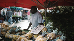 ©IRT/Miles and Love – Marché Forain