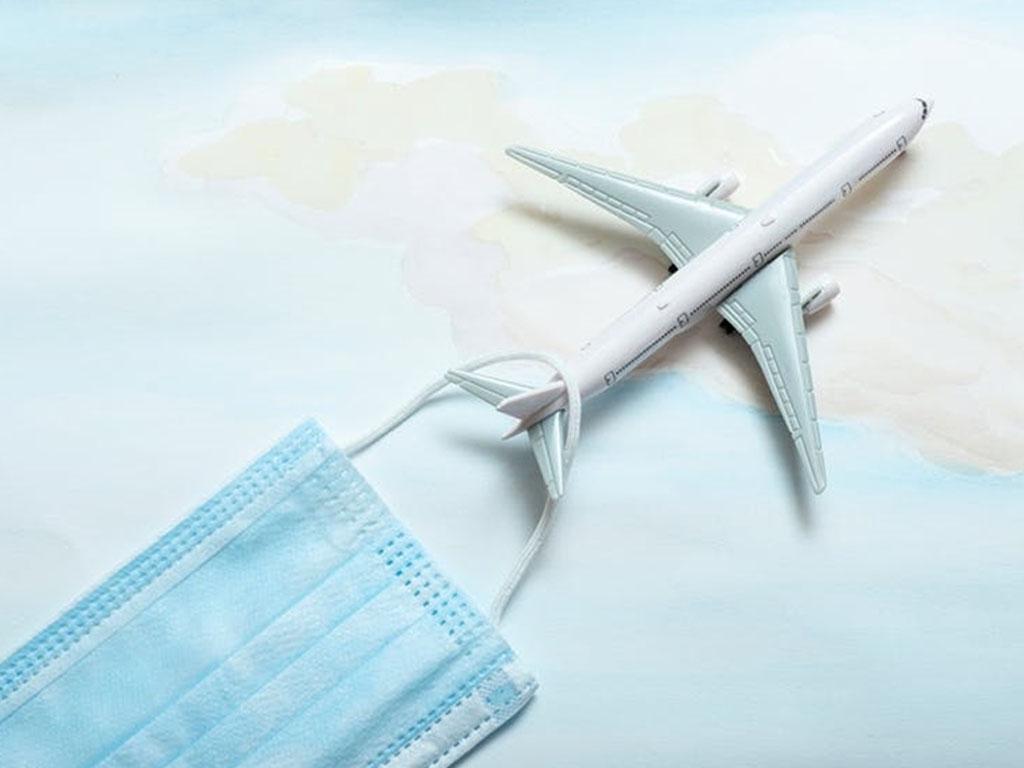 A partir du 30 août, le pass sanitaire concernera les personnels navigants des compagnies aériennes - Depositphotos Mikhail Berkut / Shutterstock