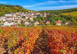 Pernand Vergeless  © Alain Doire - BFC Tourisme