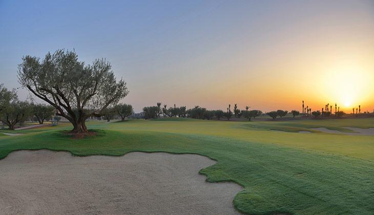 Le golf 18 trous de l'hôtel Royal Palm de Marrakech donne sur les montagnes de l'Atlas. DR