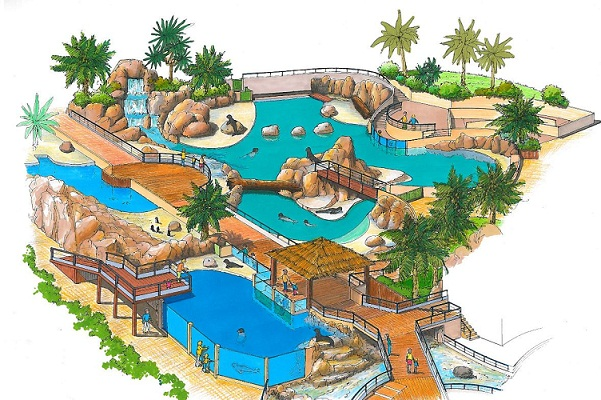 Les otaries de Marineland pourront prchainement profiter d'un nouveau bassin de 1 600 m² - DR
