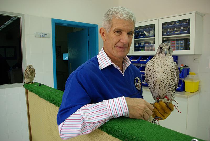 La fauconnerie fait partie de la culture dubaïote. Près de la tour Burj Khalifa, le Dubaï Falcon Hospital guérit les affections et soigne la forme des rapaces - DR