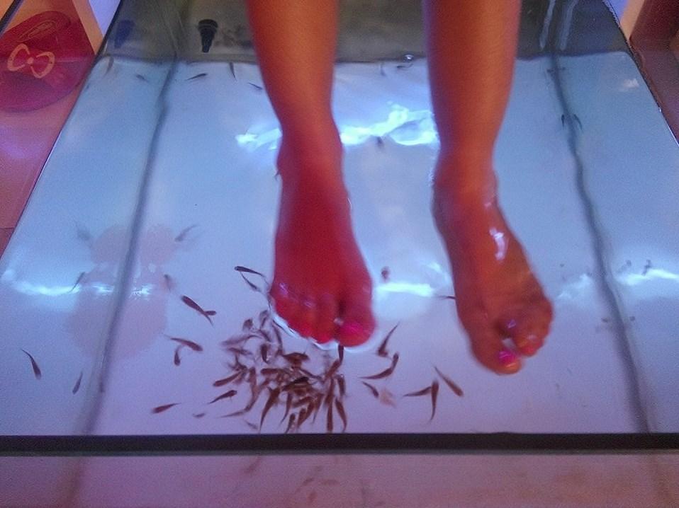 """Au spa du Port de la Goulette, aux côtés du hammam traditionnel et des salons de massage, un """"fish pedicure"""" - DR"""