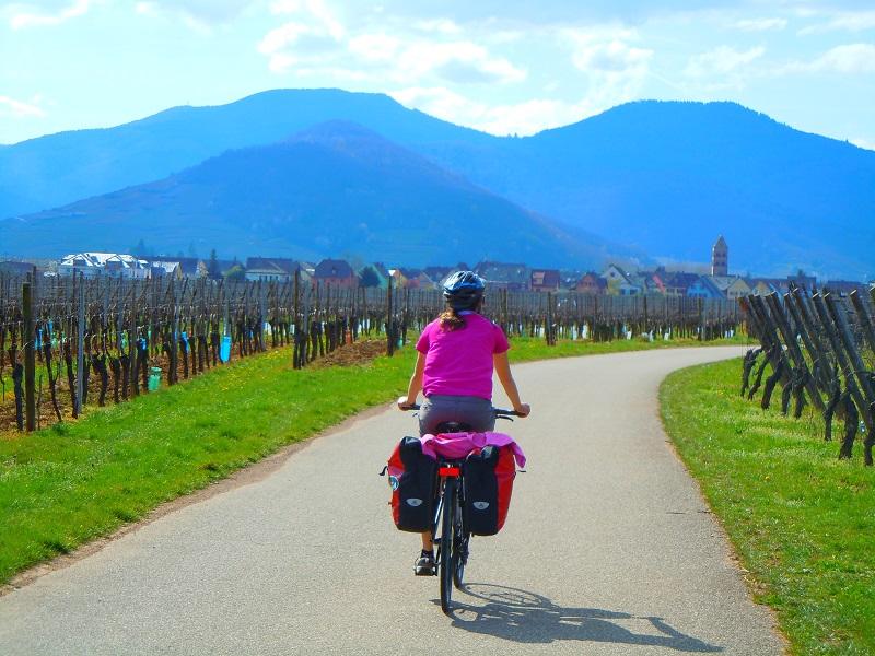 L'Alsace et ses voies vertes à travers les vignes fait partie des produits phares - DR : CycloGo