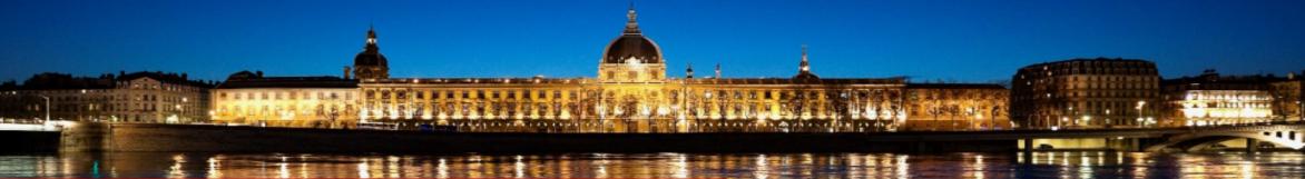 Le tourisme se porte plutôt bien à Lyon en 2015 - Photo : OnlyLyon