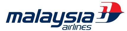 MH370 : le débris d'avion retrouvé à la Réunion provient du vol de la Malaysia