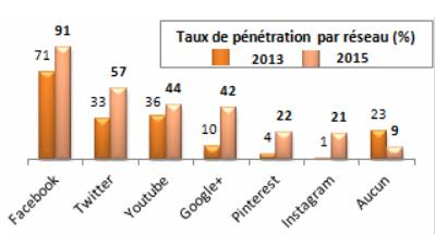 Pourcentage d'entreprises touristiques présentes sur les différents réseaux sociaux en 2013 et en 2015 - DR : PS9 Conseil