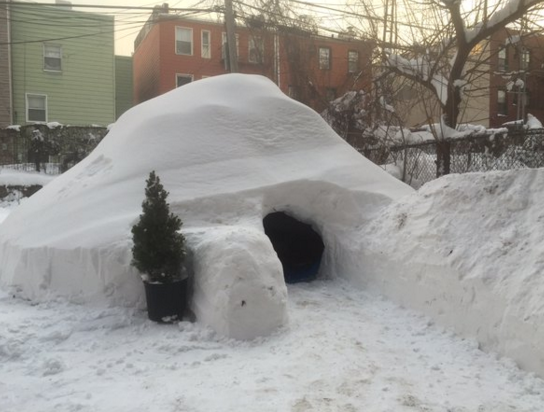 L'igloo était proposé à 200 dollars US la nuit sur Airbnb - Photo : Twitter