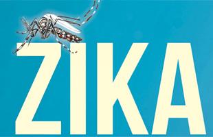 """Virus Zika : """"il ne doit y avoir aucune restriction imposée aux voyages"""", selon l'OMS"""