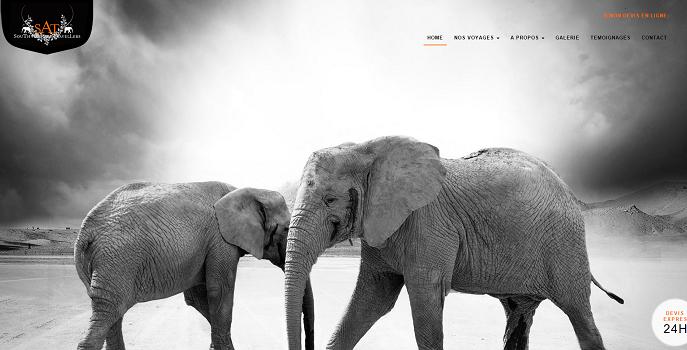 La nouvelle version du site Internet de South African Travellers est plus moderne - Capture d'écran