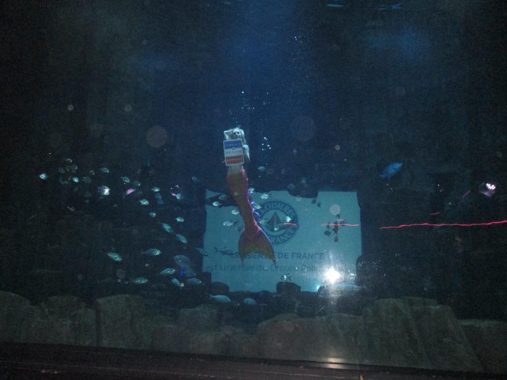 """Croisières de France a privatisé l'Aquarium de Paris pour ses clients agents de voyages. Au programme, une féérie aquatique avec une sirène """"pour de vrai"""". Photo MS."""