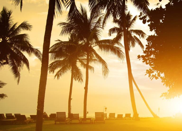 Chaises longues sur une plage de l'océan Indien – Sri Lanka – © Givaga – Fotolia.com