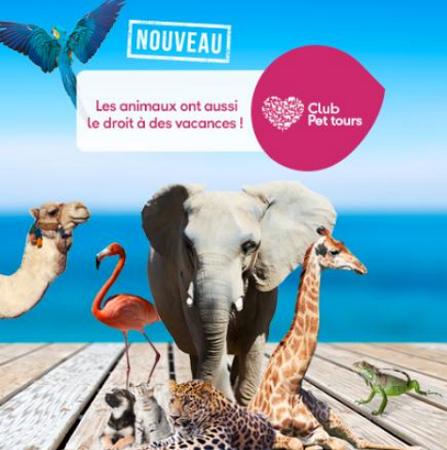 Club Pet tours : Jet tours lance son Club dédié aux animaux de compagnie