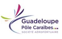 Aéroport Guadeloupe Pôle Caraïbes : le trafic passagers décolle de 14% en mars 2016