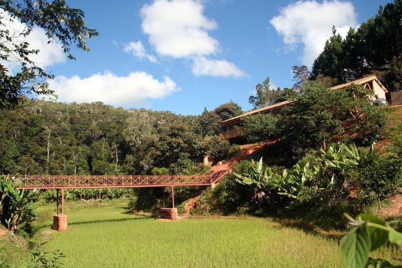 Ce cadre grandiose dominé par la forêt primaire dans la vallée tapissée de rizières, est celui d'un gîte rural dans la région d'Anjozorobe. Un projet exemplaire piloté par une ONG en parfaite symbiose avec les villageois, formés et salariés par