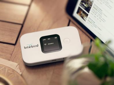 Un boîtier wifi 4G unique au prix de 99,95€ et un crédit data valable dans plus de 45 pays (c) bitebird