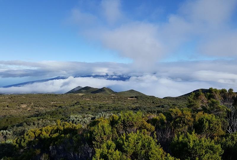 Sur la route du volcan au petit jour... - DR : A.B.
