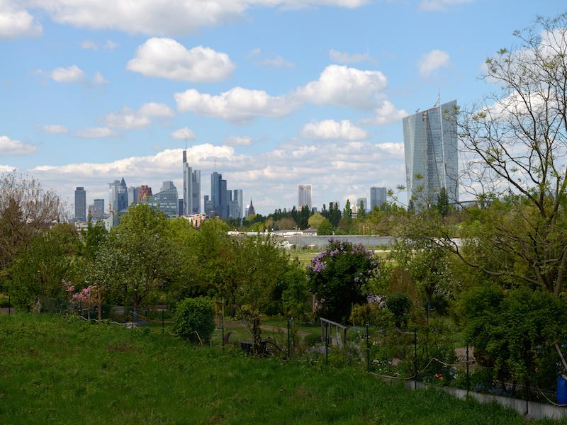 On compare souvent la métropole allemande à La City londonienne à laquelle elle pourrait d'ailleurs « voler » le titre de capitale financière économique de l'Union européenne depuis le Brexit des Anglais © Office du tourisme de Francfort