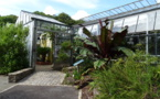 Finistère: the National Botanic Conservatory of Brest and its exceptional gardens