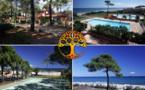 Corse : le Groupe Adonis Hôtels & Résidences créé Adonis Corsica