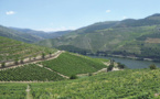 Porto et la vallée du Douro, fascinant duo Unesco