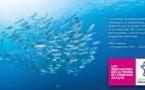Les Hauts-de-France accueillent les 12èmes Rencontres des Acteurs du Tourisme