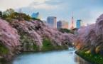 JTB: le Japon devient une destination de plus en plus familiale