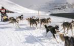 La Grande Odyssée Savoie Mont-Blanc : une aventure en chiens de traineau de 11 jours !