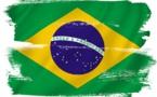 Brésil : épidémie de fièvre jaune dans plusieurs Etats
