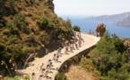 France : les micros TO se lancent dans la course aux vélos électriques !