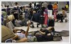 Thaïlande : les TO s'engagent au delà de leurs responsabilités... pas les autres !