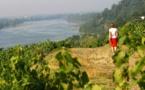 Pays de la Loire : du nouveau pour 2017 !