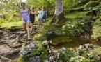 Samoëns : La Jaÿsinia à l'honneur pour les journées botaniques les 24 et 25 juin 2017