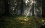 La Suède, première destination à faire sa promo sur Airbnb